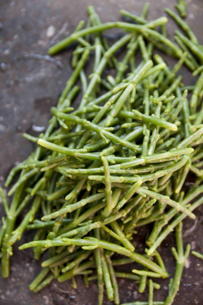 Zeekraal, vis. recepten food, foodkrabbel